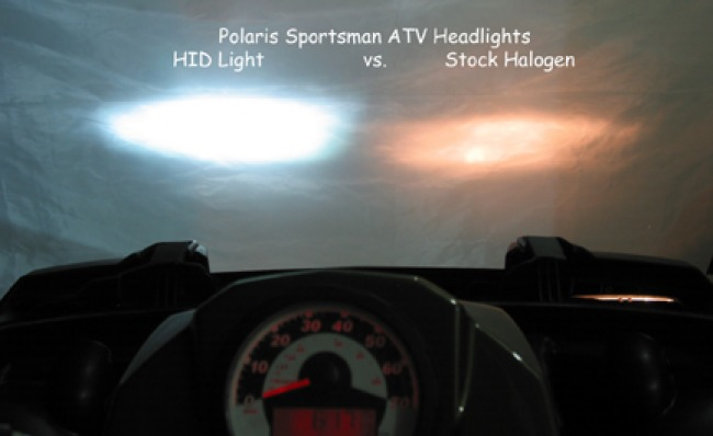 HID vs. Halogen